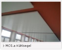 MCSa1